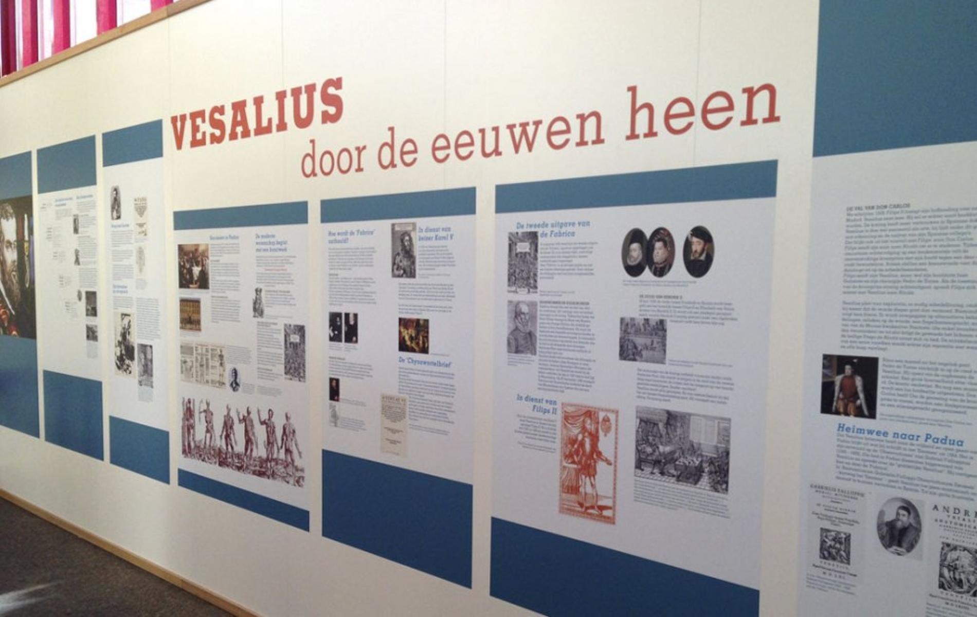 Vesalius door de eeuwen heen